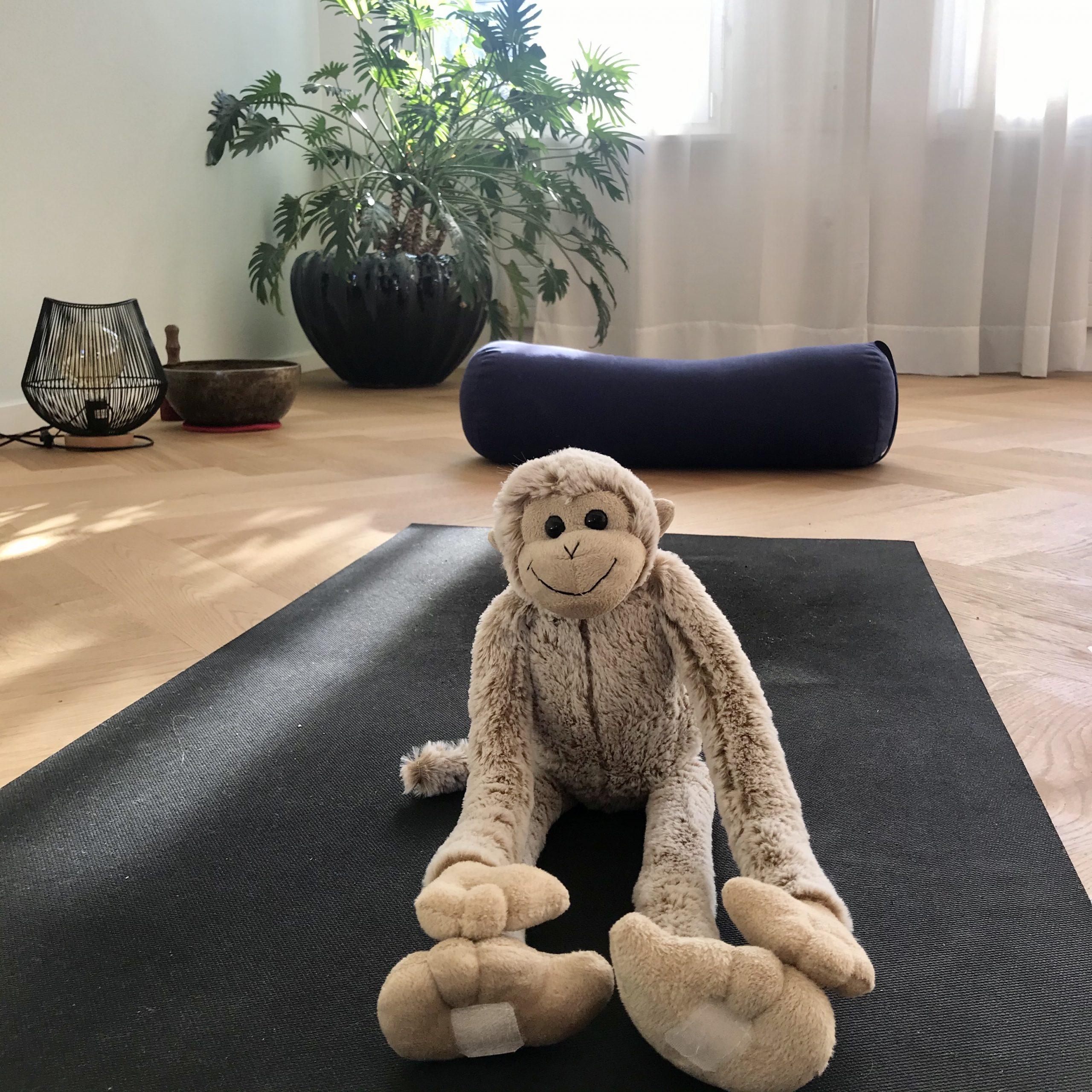 Hanuman auf der Yogamatte